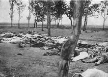 Գերմանիայում Թուրքիայից պահանջել են ճանաչել Հայոց ցեղասպանությունը